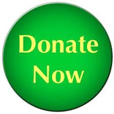 Donate Now Green Button