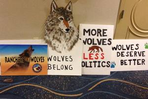 Wolves Rally signs CAFG Comm. hearing 4.16.14